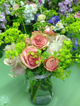 Simply Roses and Alchemilla